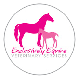 Exclusively Equine