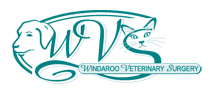 Windaroo Veterinary Surgery